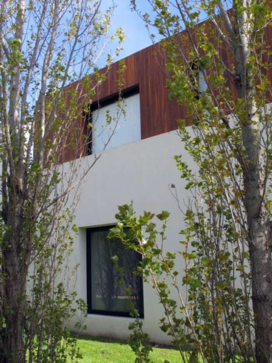 dzn_House-in-Buenos-Aires-by-Guillermo-Radovich-12