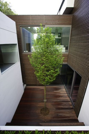 arquitectura the BR house 05