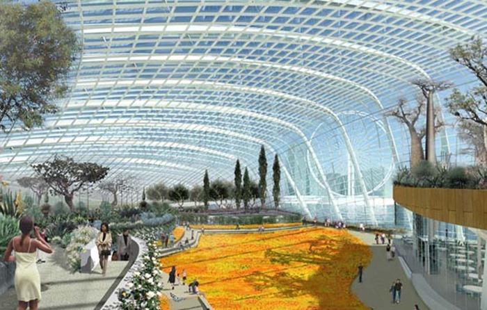 Garden_of_the_Bay_Singapore_Wilkinson_Eyre_CM5