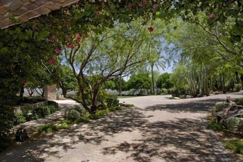Residencia  Arizona (3)