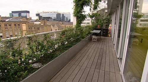 Roofgarden_Apartment_London_Tonkin_LiuCm11