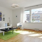 lovely-one-room-apartment-Freshome12
