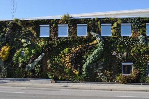 Semiahmoo-Library-Green-Wall-10