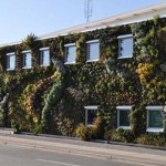 Semiahmoo-Library-Green-Wall-11