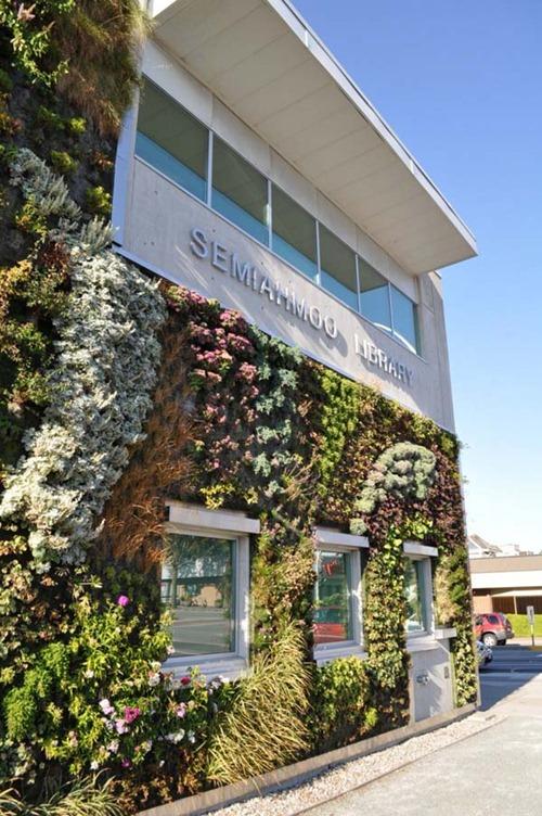 Semiahmoo-Library-Green-Wall-13