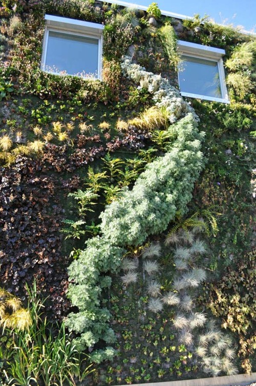 Semiahmoo-Library-Green-Wall-18