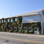 Semiahmoo-Library-Green-Wall-2