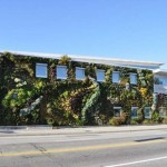 Semiahmoo-Library-Green-Wall-3