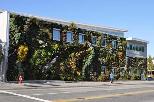 Semiahmoo-Library-Green-Wall