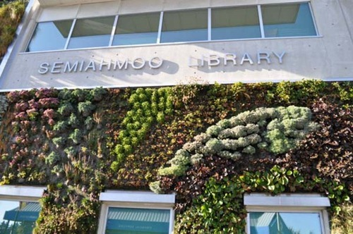 Semiahmoo-Library-Green-Wall-9