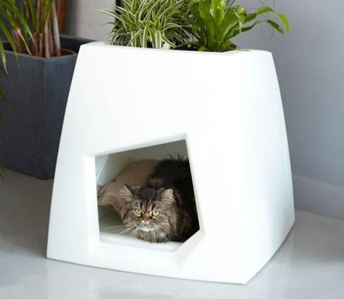 Kokon-Modern-Pet-House-4