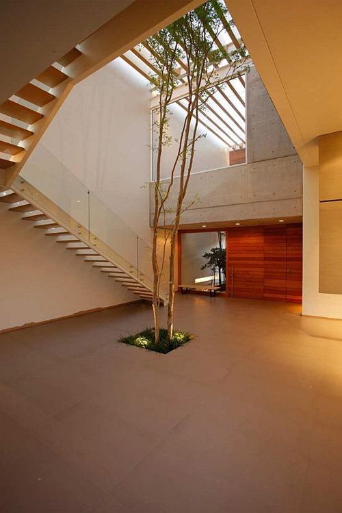 lucke-orozco-house9