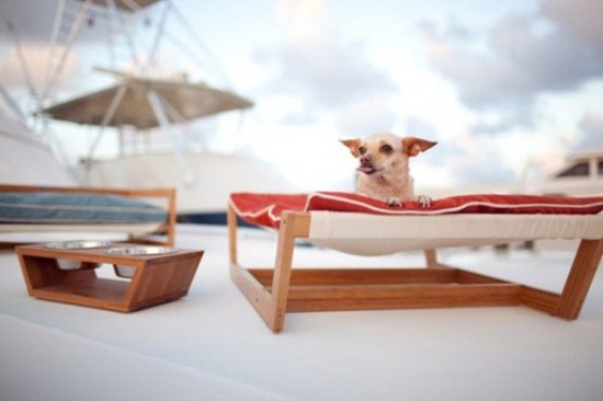 luxurious-furniture-for-spoilt-pets-7-554x369