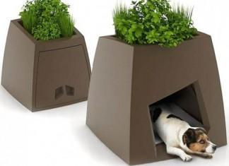 Kokon-Modern-Pet-House-537x435