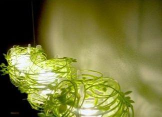 Lámpara de la Vid Verde